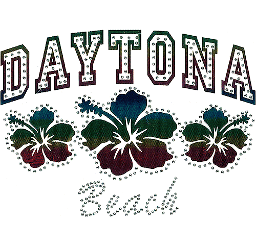 S101445-DB - Daytona Beach with Hibiscus