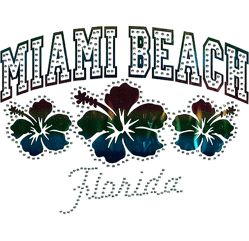 S101445-MB - Miami Beach, FL with Hibiscus