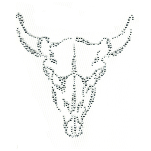 S2020 - LONGHORN SKULL, ANIMALS, STEER